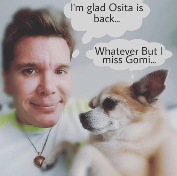 lost dog finds dad through instagram