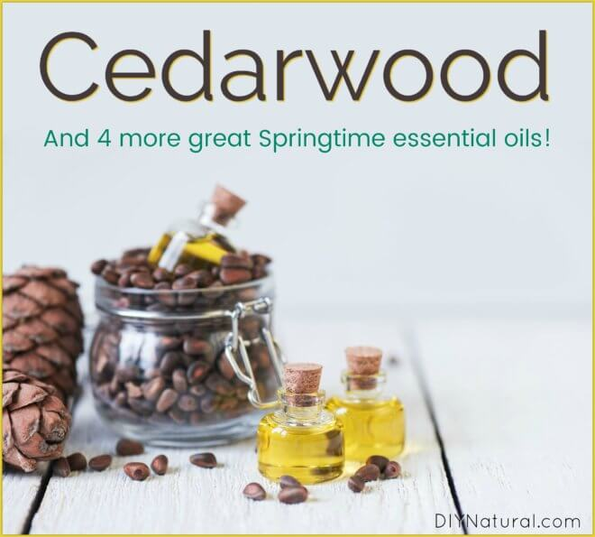 Five Essential Oils Great For Springtime DIY Projects