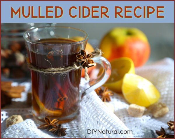 Learn To Make This Delicious Mulled Cider Recipe