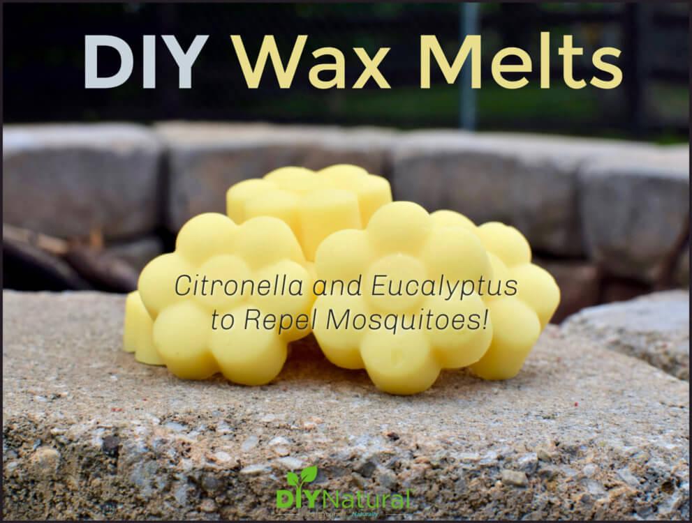 DIY Citronella & Eucalyptus Bug Repelling Wax Melts