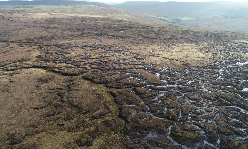 Climate Change: Why Saving The UK's Peatlands Is Crucial