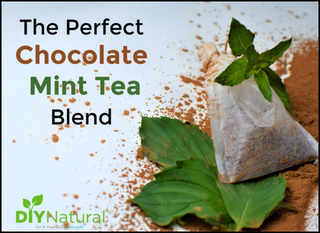 A Perfect Chocolate Mint Tea Blend of Mint & Cacao