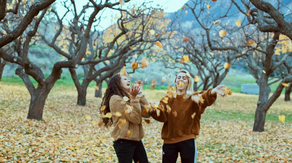 How The Falling Autumn Leaves Benefit Our Mind and Body