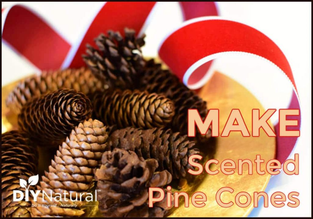 Scented Pine Cones for Holiday Decor and Potpourri