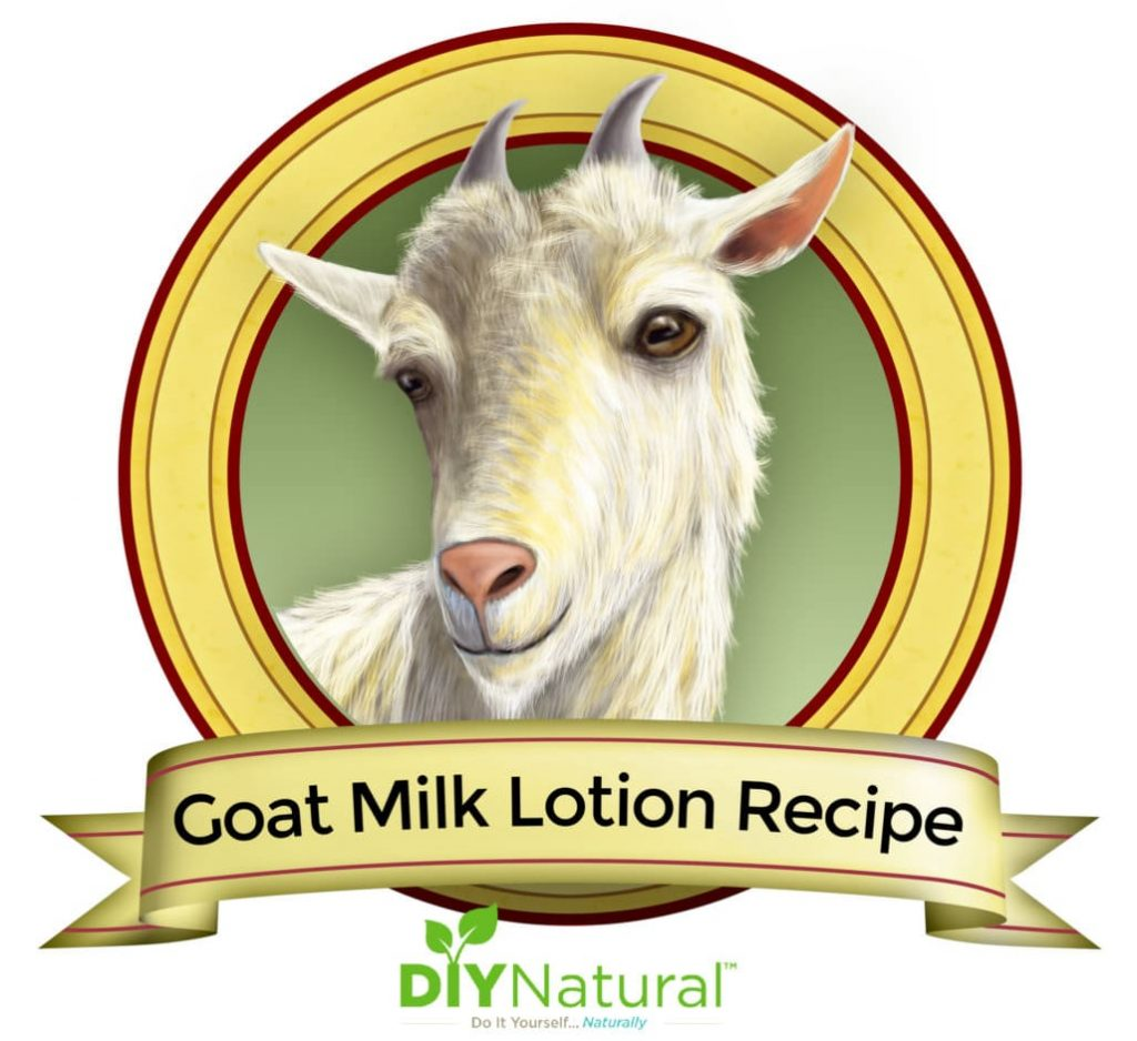 A Simple Goat Milk Hand and Body Lotion Recipe