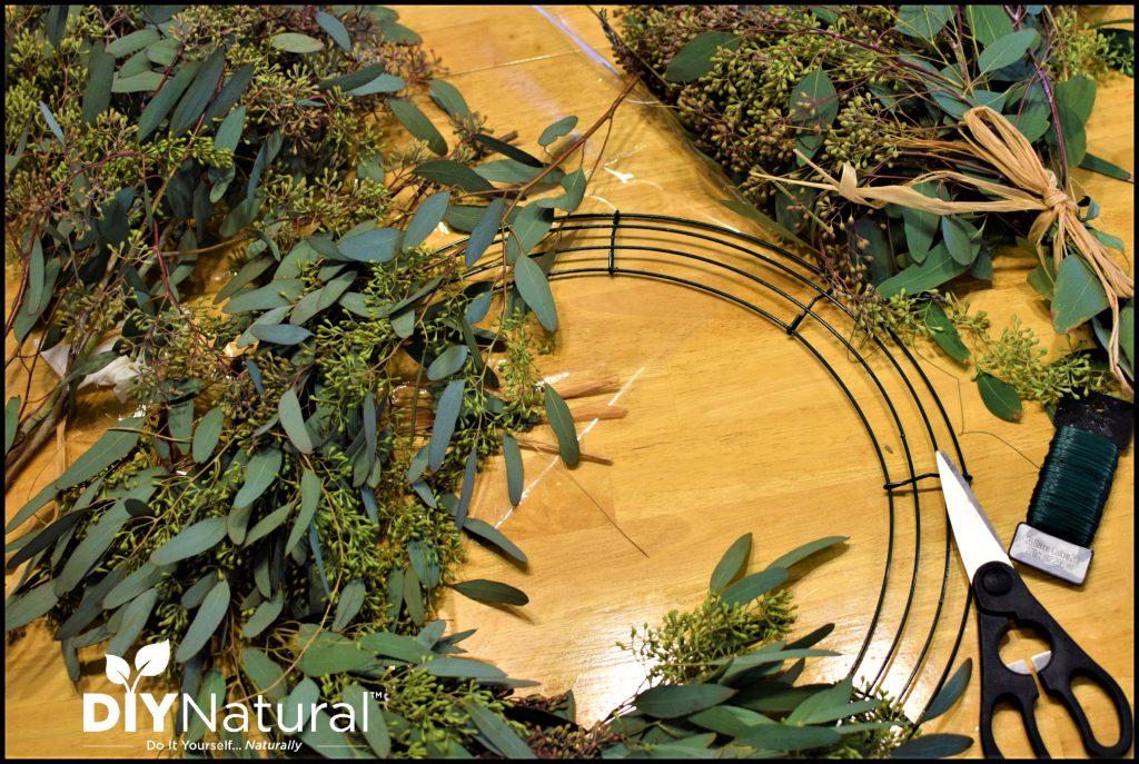 Simple Tutorial for a Fresh DIY Eucalyptus Wreath