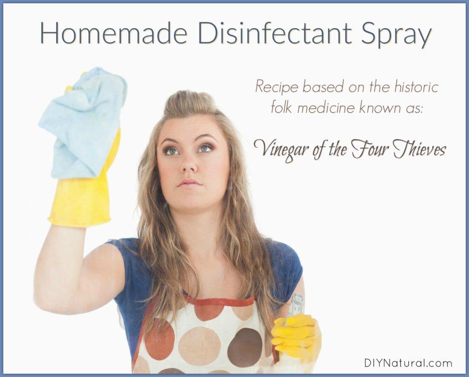 Homemade Disinfectant Spray Four Thieves Vinegar