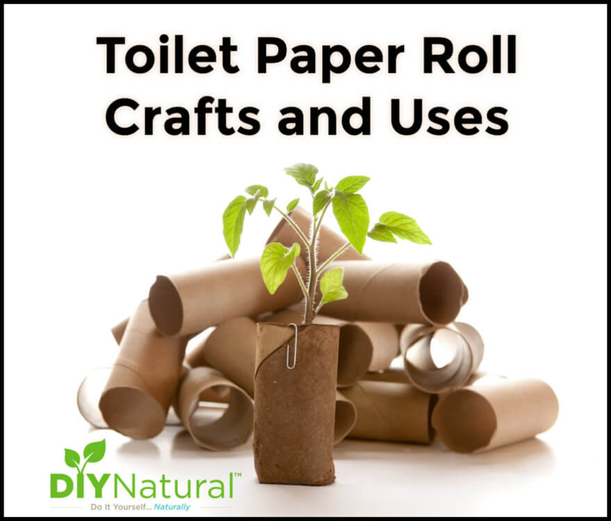 25 Ideas for Toilet Paper Roll Crafts and Other Uses