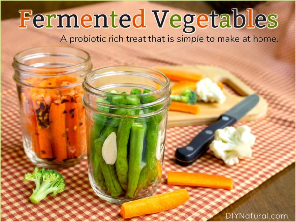 Fermented Vegetables: Simple and Probiotic-Rich!