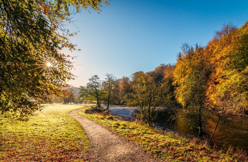uk wildlife and birding trails